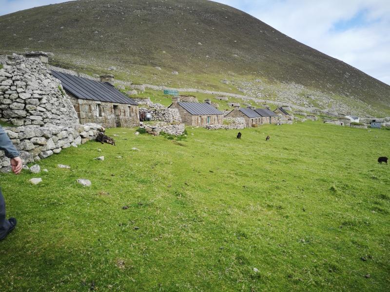 St Kilda houses